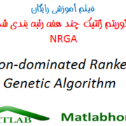 NRGA free download videos in matlab
