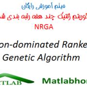 NRGA free download videos in matlab